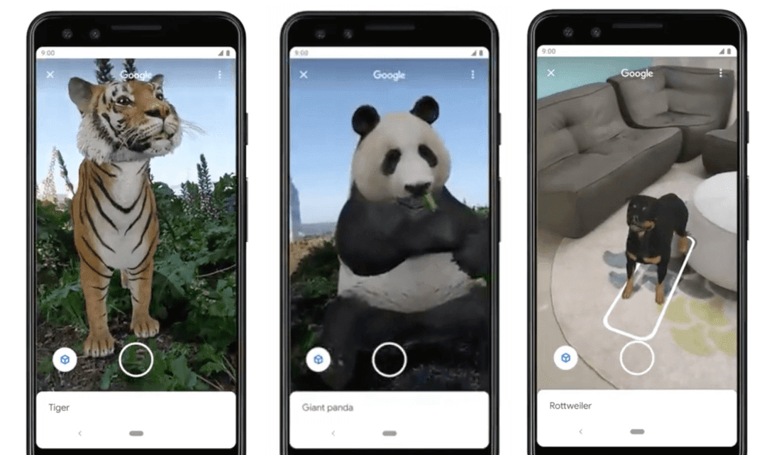 Google AR Search Now Enables You To Put Out A Real Tiger In Your Living Room